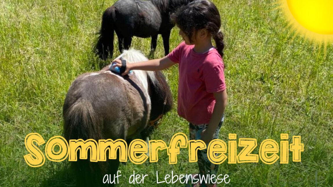 Sommerfreizeit auf der Lebenswiese